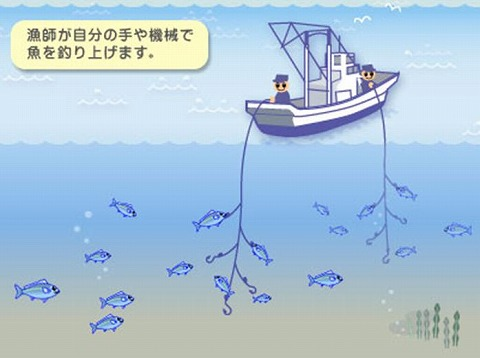 一本釣り漁法