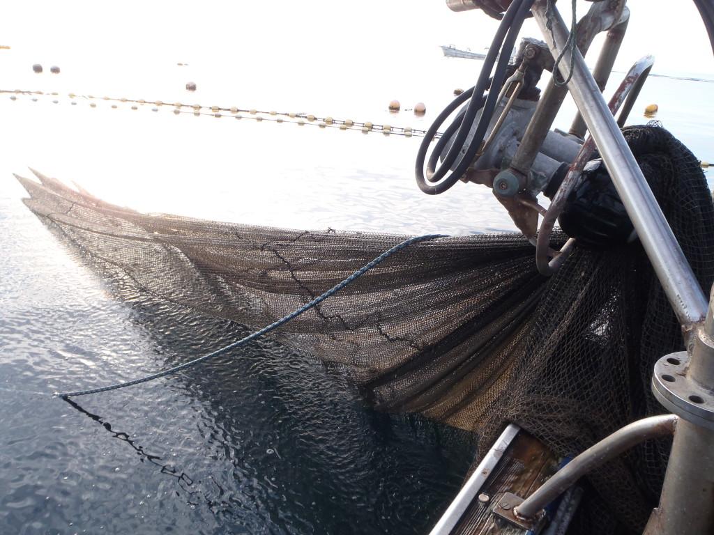 網を巻き取る機械のクロースアップ。