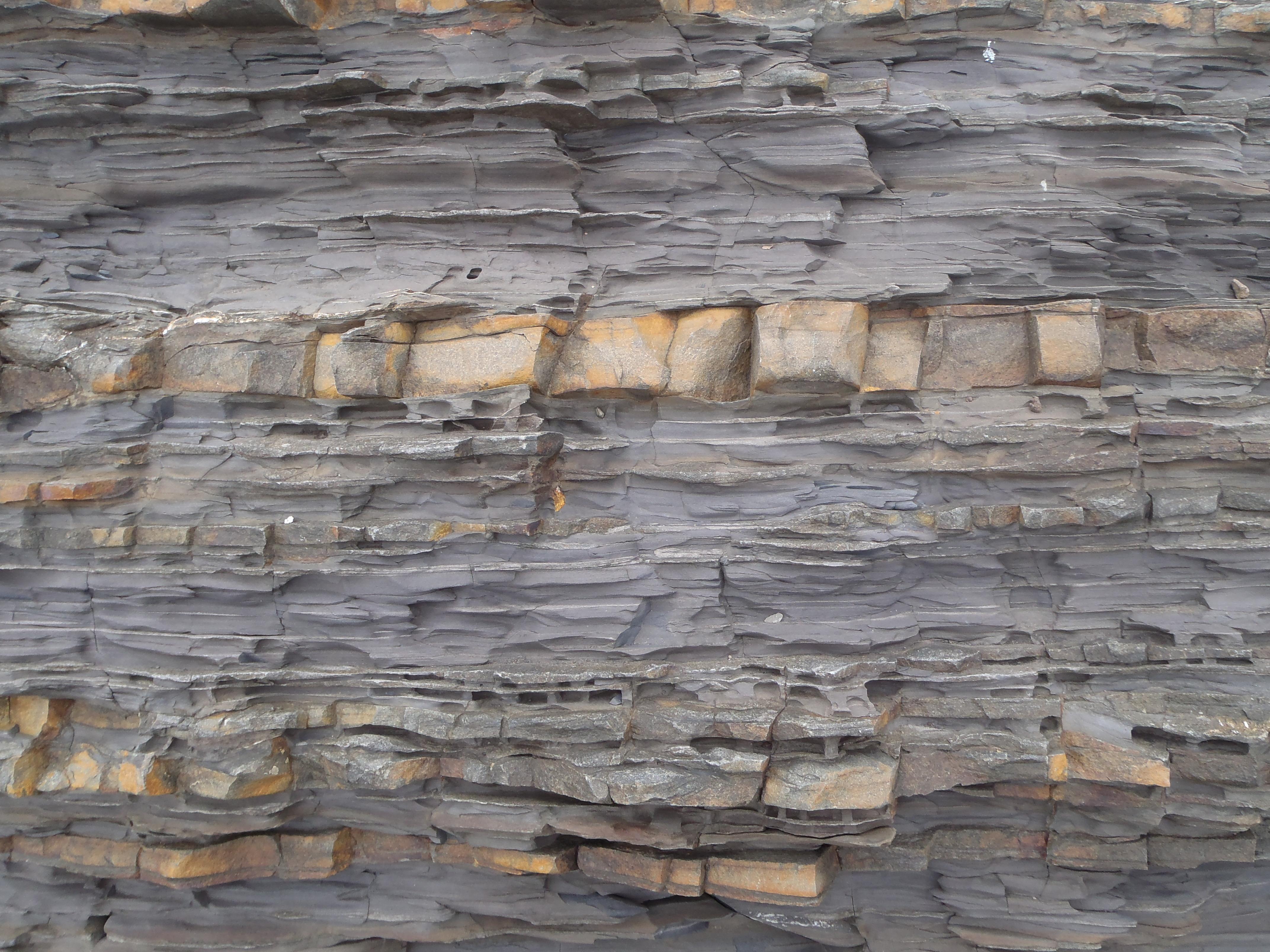 対州層群。泥板岩と砂岩が交互に堆積している。